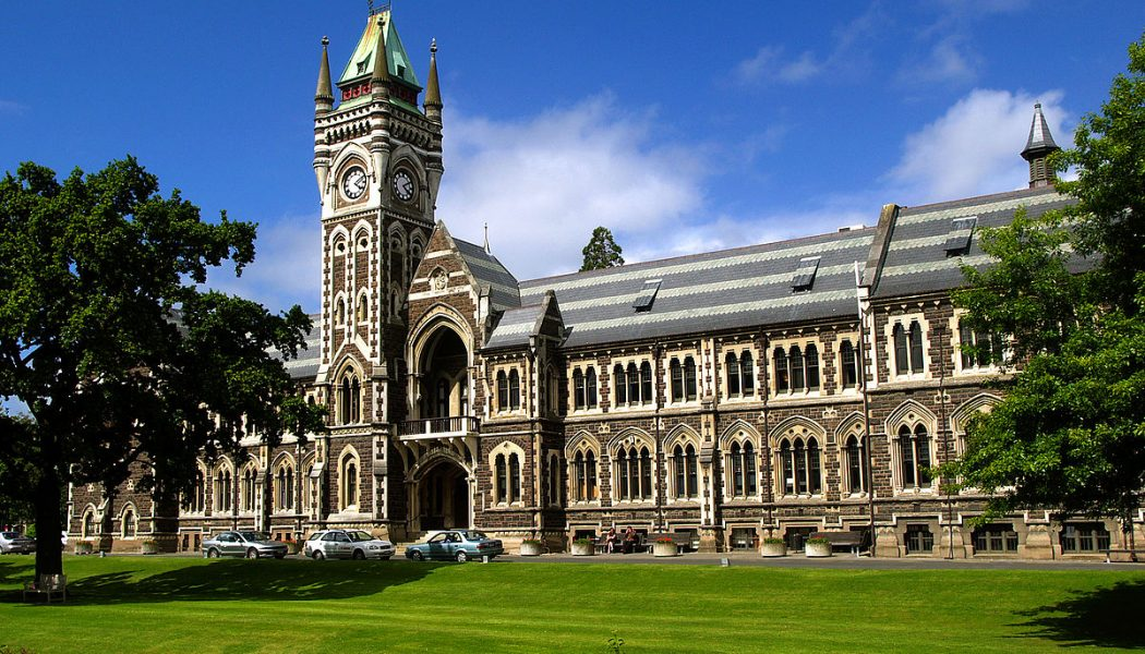 Учеба в Новой Зеландии: как правильно выбрать учебное заведение?